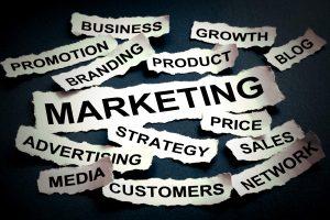 SEO案例:「产品、内容、SEO」金三角,绿藤生机营收五倍成长